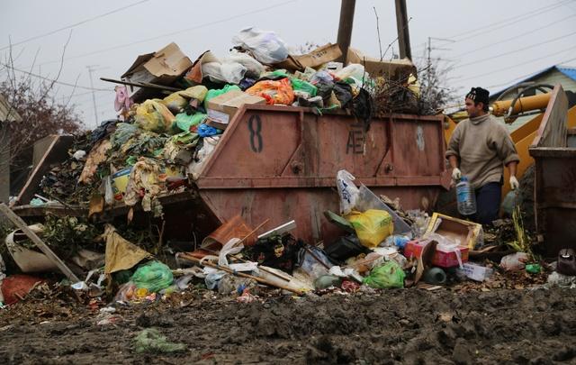 Десятки переполненных контейнеров и мусорные свалки нашли в Волгограде