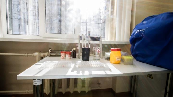 В Петербурге испытывают вакцину от лихорадки Эболы