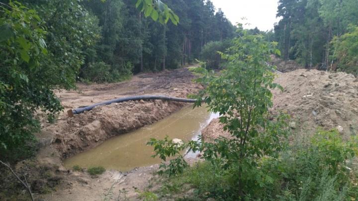 «Месиво и зелёная муть»: челябинцев возмутили масштабные раскопки на берегу Шершней
