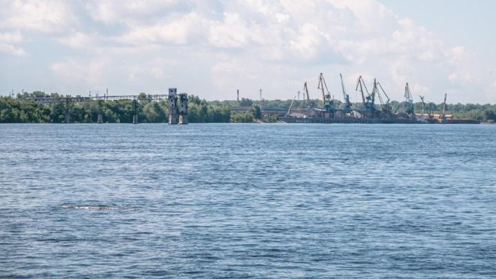 Площадь нового грузового порта в Самаре составит 68 га