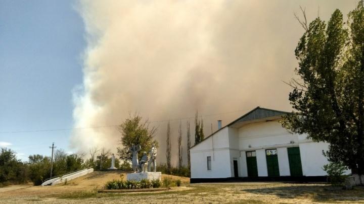 Пожар в Ростовской области распространился более чем на 3,3 тысячи гектаров