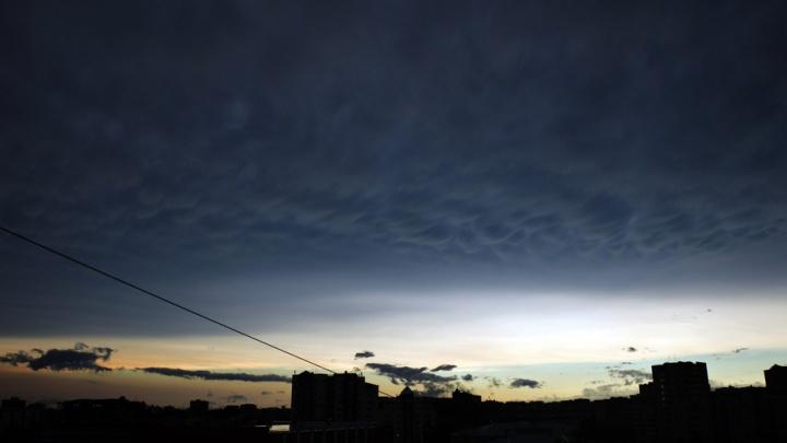 Гроза и ветер до 17 м/с: синоптики обещают непогоду в Тюмени на два дня подряд