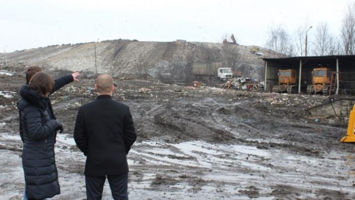 Стало известно, насколько заполнены мусорные полигоны Ярославской области