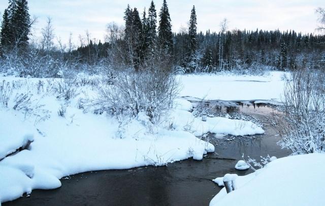 Реки Поморья ожидает ледовая разведка