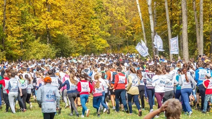Забег по лесу на 12 км: в выходные в Самаре пройдет «Кросс наций»