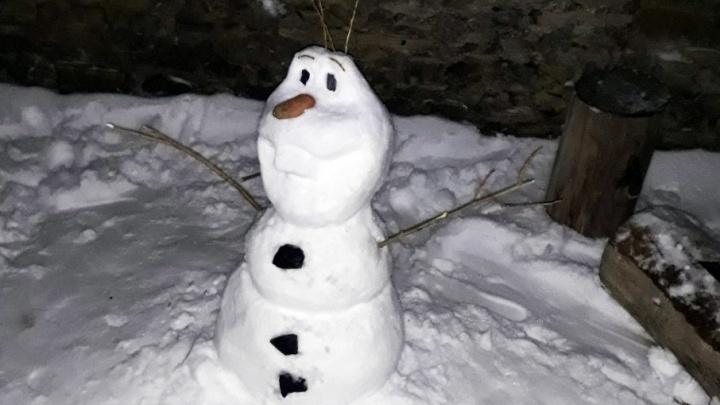 Рокер и динозавр: ростовчане делятся в интернете фотографиями своих снеговиков