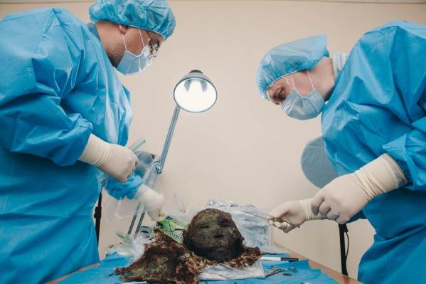 Образцы отбирают с помощью хирургических инструментов