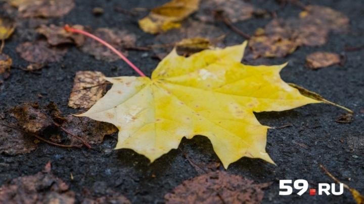 Крепкий сон и походы в солярий: пермяки рассказали, как справляются с плохим настроением осенью