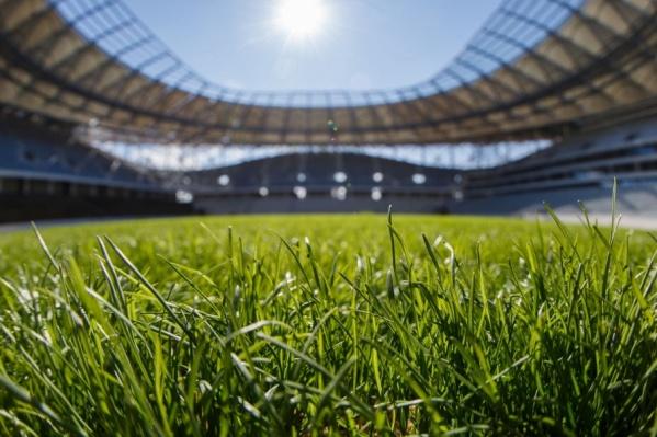 Насыщенно-зеленый газон прошили полимерной нитью