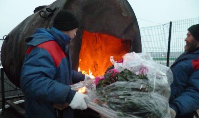 В Ярославской области сожгли отравленные цветы