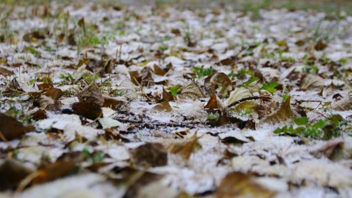 В Самаре выпал первый снег