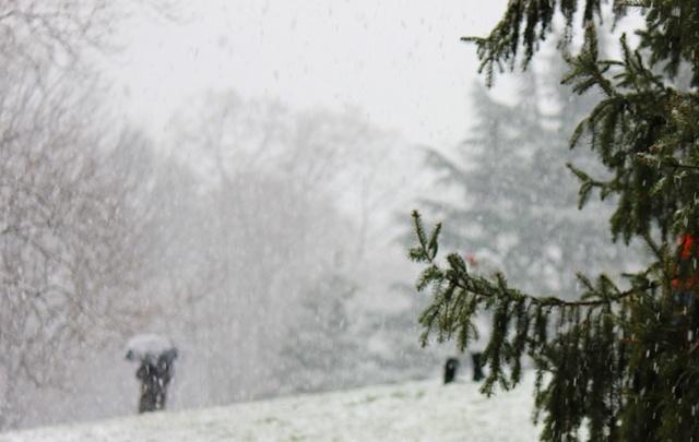 Северян ждет снежная и ветреная суббота