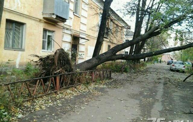 Внимание! МЧС ввело в Ярославской области «жёлтый» уровень опасности