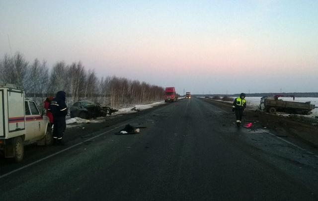 Рано утром на трассе Тюмень–Омск произошло смертельное ДТП