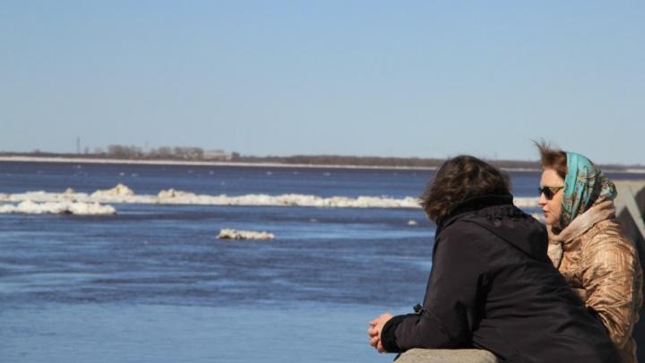 Замерзнуть до костей, но быть абсолютно счастливой: как в Архангельске проходит ледоход