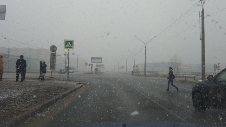 Снежная метель и северный ветер: весна в Ярославле берёт тайм-аут