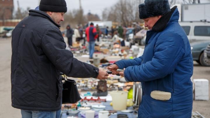Нелегальные торговые ряды птичьего рынка Волгограда поменяли на пихты