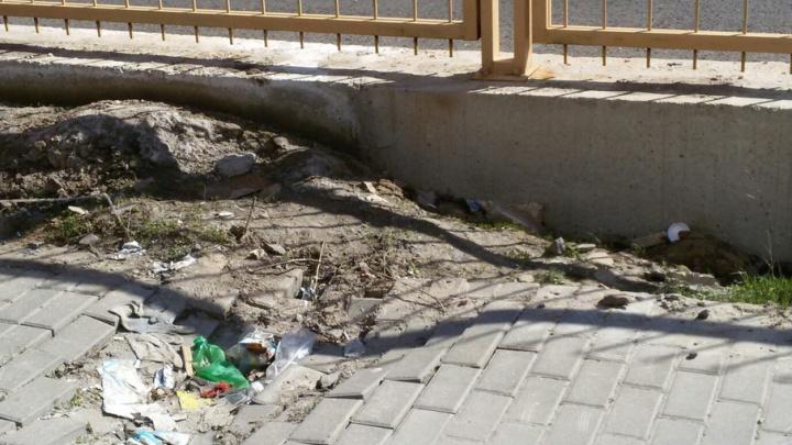 Фотоэкскурсию по проблемным местам на Левенцовке устроила ростовчанка