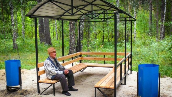 Пять беседок, пять скамеек: тропу здоровья в Челябинске отремонтировали за полмиллиона