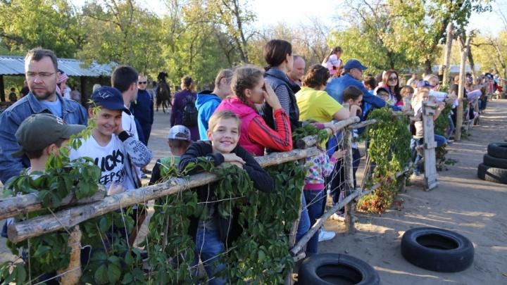 Под Волгоградом 500 человек провели трезвыми все выходные