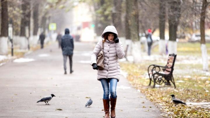 Ярославские девушки стали реже покупать туфли