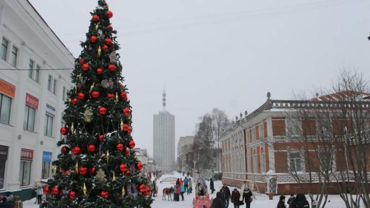 В Архангельске первую новогоднюю елку откроют 25 ноября на Чумбаровке