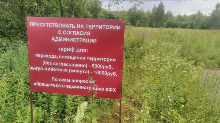 В Ярославской области в чистом поле установили ценник за проезд