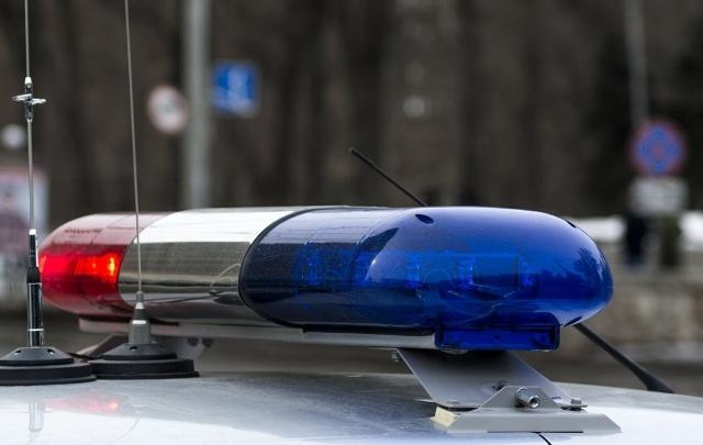 Полицейские задержали передвигавшихся на Mercedes воров-домушников