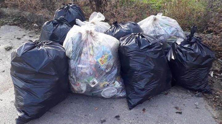 Волгоградцы спасли умирающий парк от мусорного коллапса
