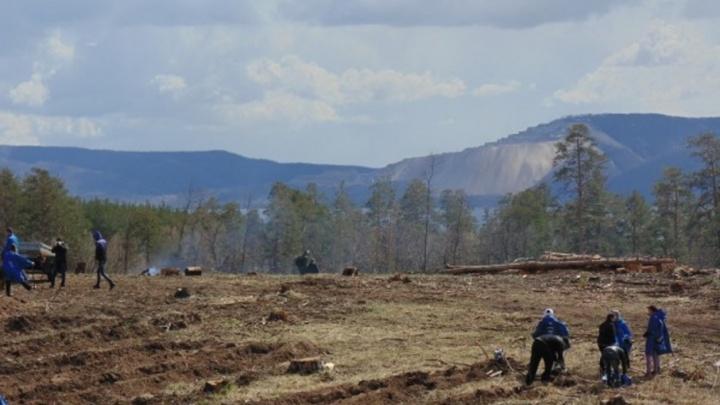 Спросил за лес: тольяттинец  пытался привлечь к ответственности Азарова, Артякова и Пушкова