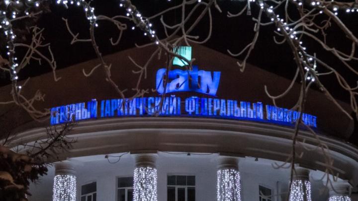 В САФУ пообещали обойтись без репрессий в отношении студентов, поддерживающих оппозицию