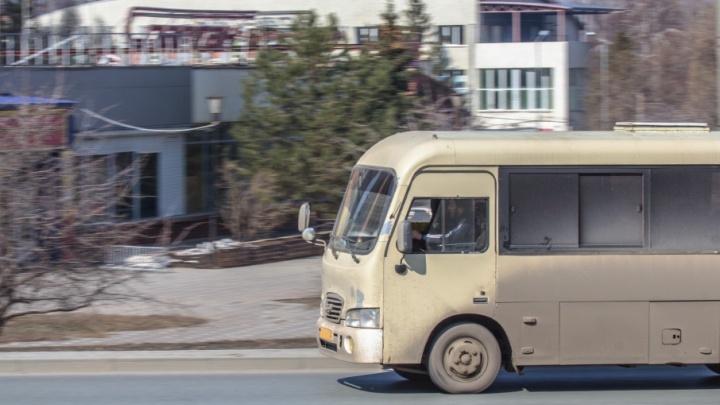 Из Самары в Южный город пустят новый автобусный маршрут, а в Кошелев-парк — нет