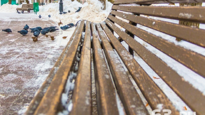 Новые скамейки и клумбы: в Самаре благоустроят бульвар на Революционной и сквер на Мехзаводе