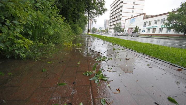 Штормовой ветер, грозы и град: МЧС выступило с экстренным предупреждением