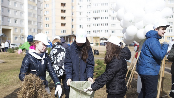 Десятки тысяч ярославцев отправятся на крупнейший в этом году субботник