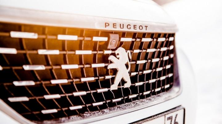 В Ярославле поймали серийного похитителя эмблем с дорогих машин