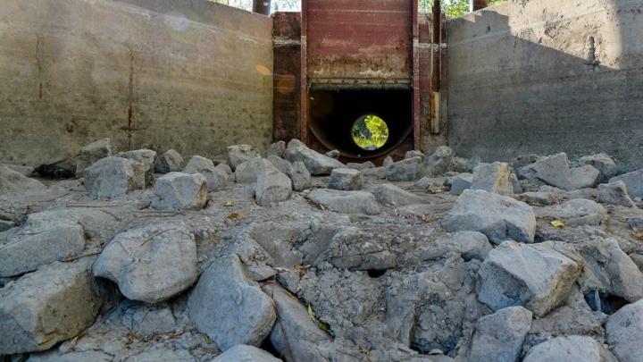 Волго-Ахтубинскую пойму накачают водой на миллион рублей