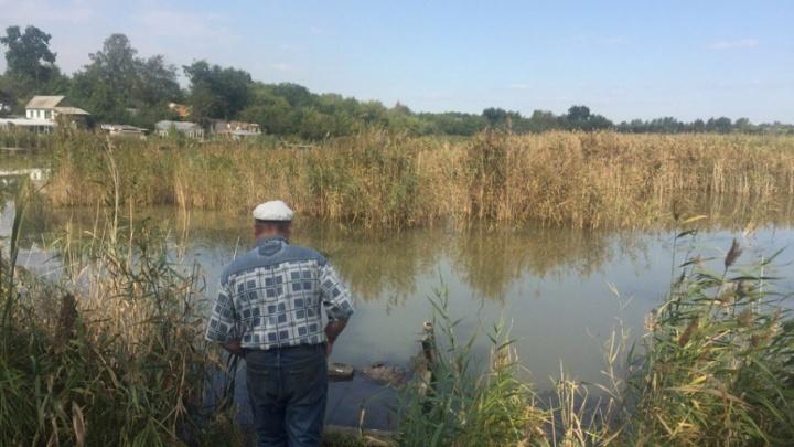 «Люди напуганы»: пруд в челябинских садах залили нечистотами