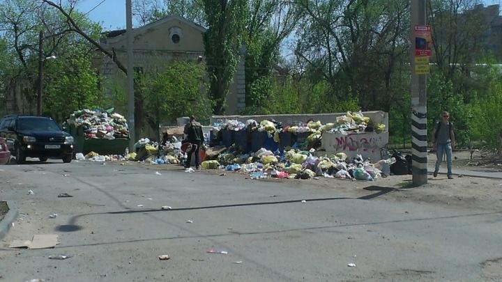 Жители утопающего в мусоре Волгограда предложили породниться с Волоколамском