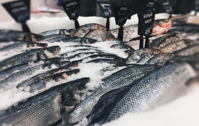 Объединение «Рыбное место» добавит Челябинску 700 рабочих мест