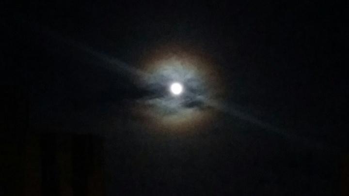 Волгоградцы ночью видели вокруг Луны розового предвестника холодов
