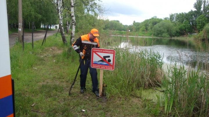В Ярославле запретили купаться в трех прудах