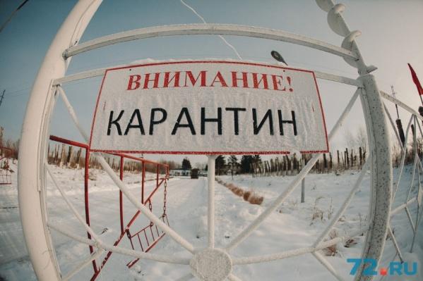 Карантин в Шорохово сняли еще 20 декабря. Но свинокомплекс не сможет работать еще как минимум год