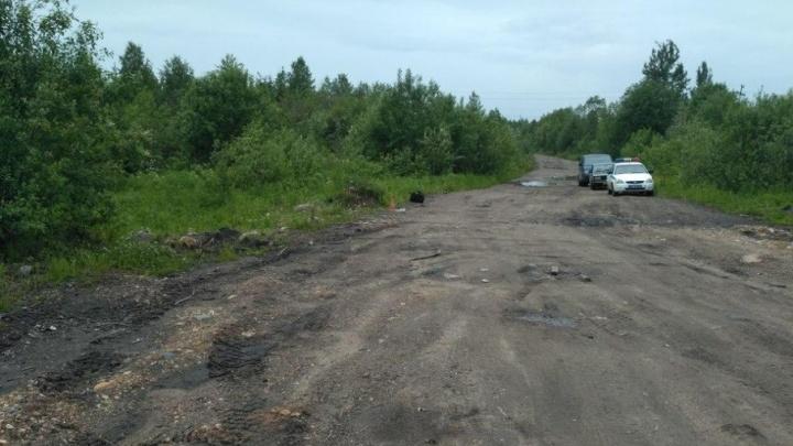 В Няндомском районе водитель КАМАЗа насмерть задавил мужчину