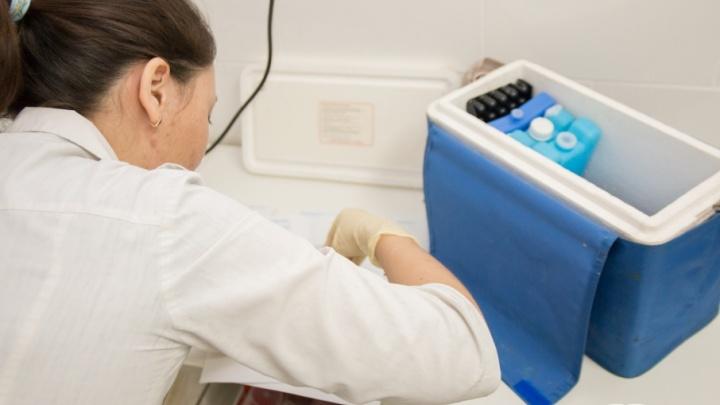 Эпидемия гриппа в Самаре: за неделю заболели более 6000 человек