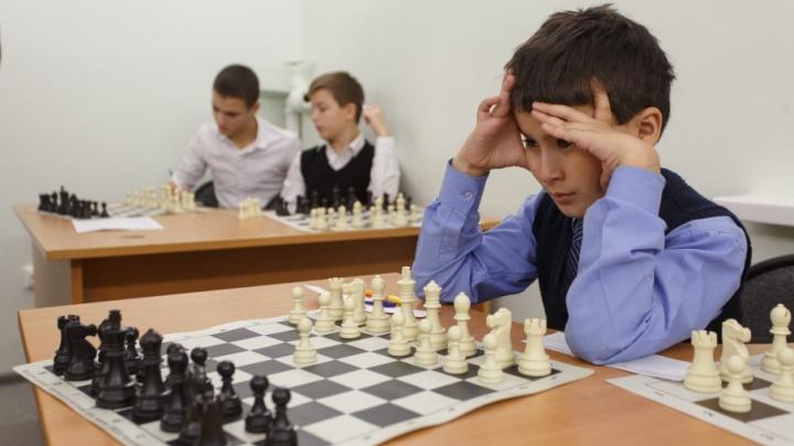 В Волгограде появился новый шахматный островок