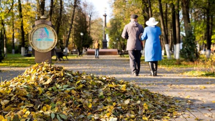 В Ярославле учителям и воспитателям приказали убрать город от опавшей листвы