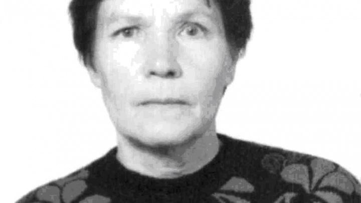 В Новодвинске волонтеры вновь ищут пропавшего человека