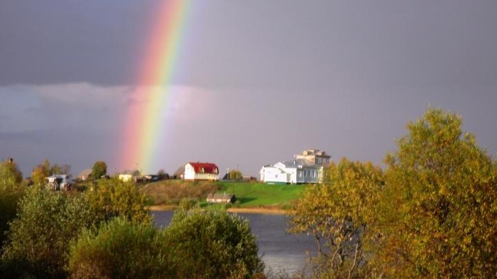 В Коношском районе пройдет литературный фестиваль «Ротковецкие чудаки»