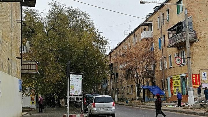 В Волгограде полетели большие снежные «мухи»
